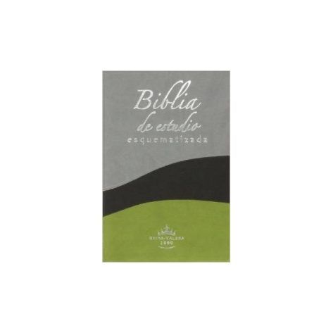 BIBLIA ESQUEMATIZADA - BICOLOR
