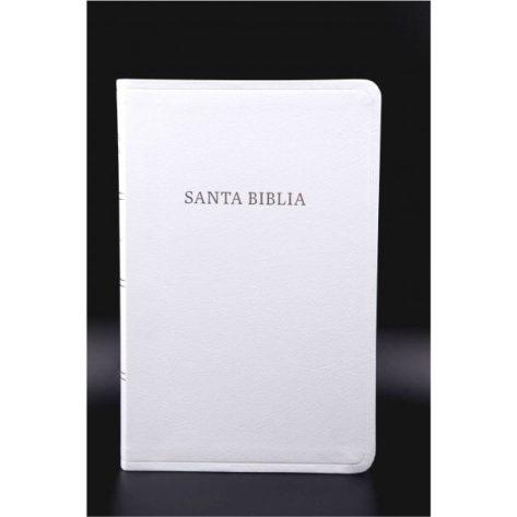 BIBLIA ESPECIAL REFERENCIA PIEL FAB -BCA/INDICE