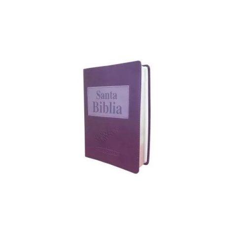 B. RVR1909 VIOLETA CANTOS PLATA, LETRA GRANDE CON CONCORD