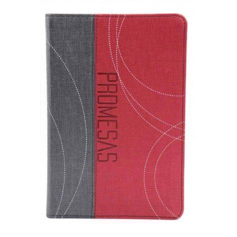 B. RVR60 Edición de Promesas para Jóvenes color Gris/Rojo