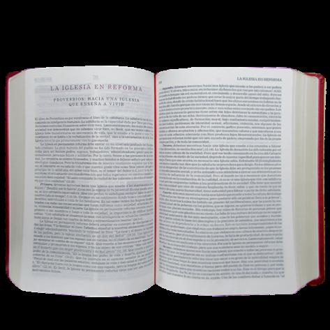 Biblia de la Reforma Edición Especial de Piel en color rojo