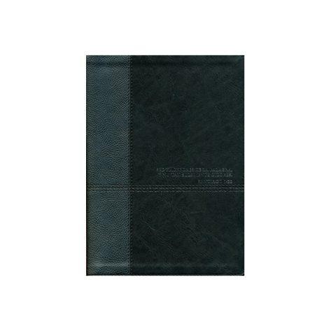 Biblia de Estudio del Diario Vivir Rvr60 negro