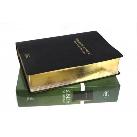 BIBLIA RVR77 DE ESTUDIO REINA-VALERA REVISADA CLASICO PIEL ESPECIAL